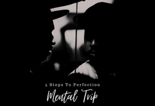 Mental Trip Mini Album 5 Steps To Perfection